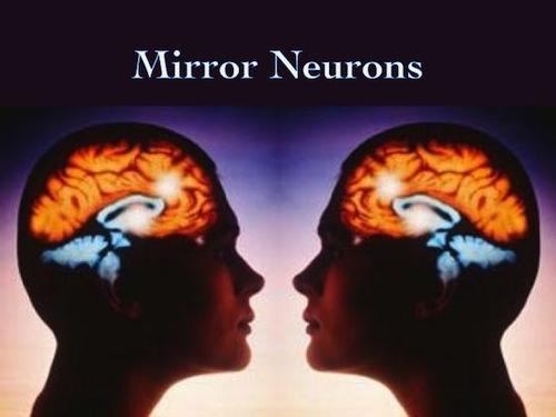 I Neuroni Specchio Dell 39 Anima I Segreti Wifi Del Tuo